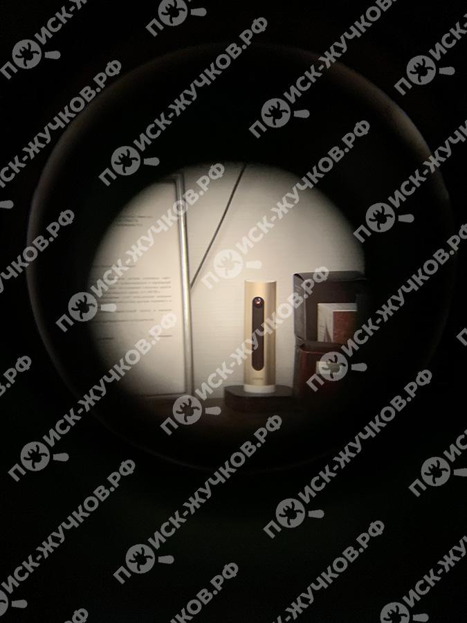 Прослушка в кабинете: камера с микрофоном как предмет интерьера